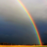 The end of a Rainbow in a yellow field against a dark and stormy sky